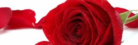 Verras uw Valentijn op Valentijnsdag