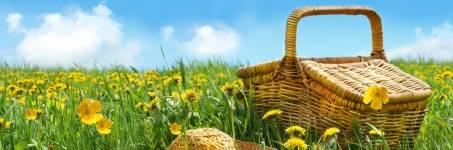 Heerlijk genieten van de lente