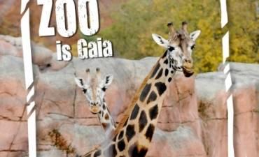 Burgers Zoo Familieweekend - TOP uitje