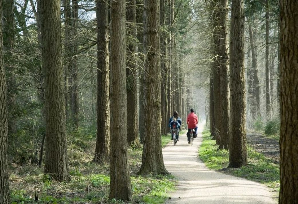 3 daags Fietsarrangement - Ontdek veelzijdig Friesland laat u onderdompelen in Luxe