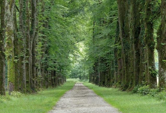 3-daags Wandelarrangement in de Achterhoek - Wandelen in de natuur