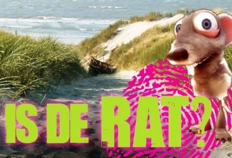 Bedrijfsuitje op het Strand: Wie is de Rat?