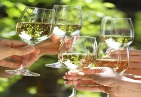 Proeverijen met wijn in Groningen - culinair uitje