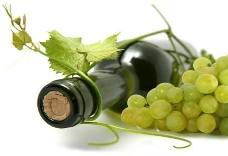 Ontdek de wereld van wijn - wijnproeverij Haarlem