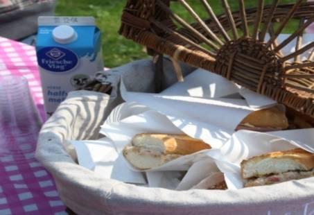 Step-Kano-Picknicktocht in omgeving Utrecht
