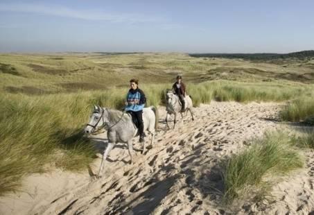 Paardrijden in Schoorl