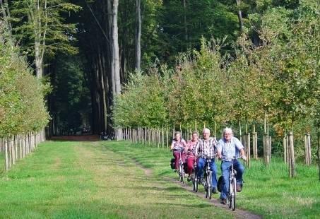 Weekendje of Midweekje wandelen in Gelderland - Montferland