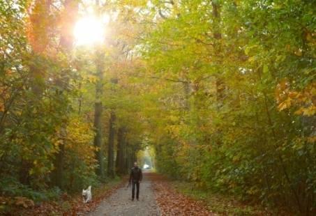 Achterhoeks wildweekend in het Montferland