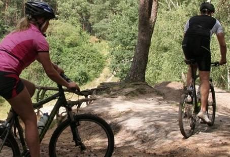 Mountainbiken door de  Sallandse Heuvelrug