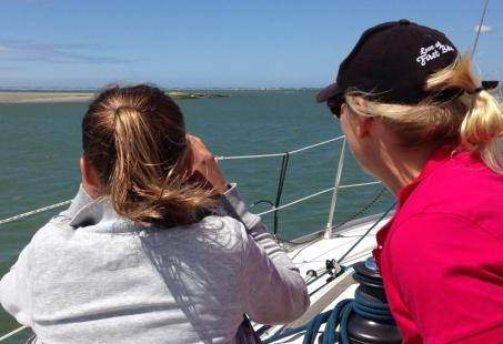 Zeilen door natuurpark de Oosterschelde - Zeehonden spotten