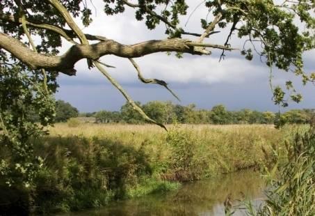 5-daagse Wandelvakantie - Wandelen door Landschap Drentsche Aa