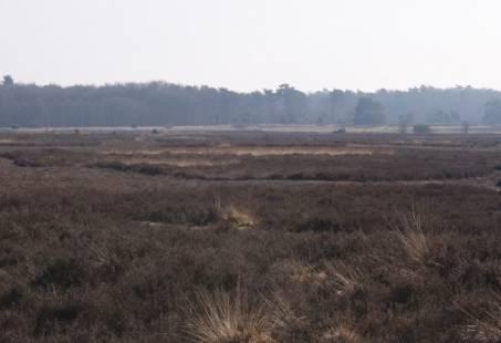 Wandelvakantie in Drenthe - 4 dagen wandelen door het Paradijs van 2 Nationale Parken