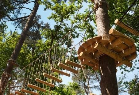 Paasloo Adventures - Compleet Dagje uit met klimmen en een activiteit naar keuze