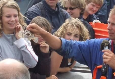 Bedrijfsuitje met overnachting - Uitwaaien op Texel