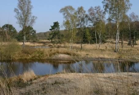Midweek Meinweg Special in Limburg - Genieten in een groene omgeving