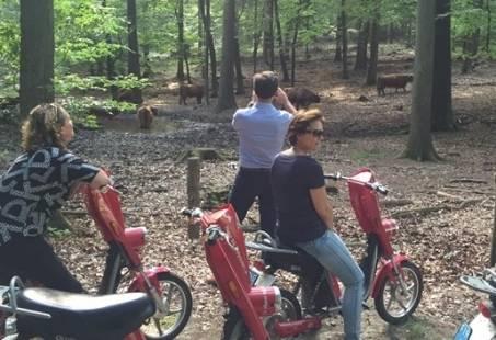 Uniek bedrijfsuitje op de Veluwe- E-scooter Puzzeltocht met GPS