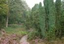 2-daags Pieterpad wandelarrangement in Drenthe