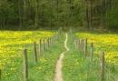 Pieterpad wandelarrangement in Drenthe - 3 dagen wandelen door de Drentse natuur