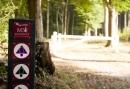 Tour de Achterhoek - Vriendinnenweekend met Solex rijden door de mooiste landschappen