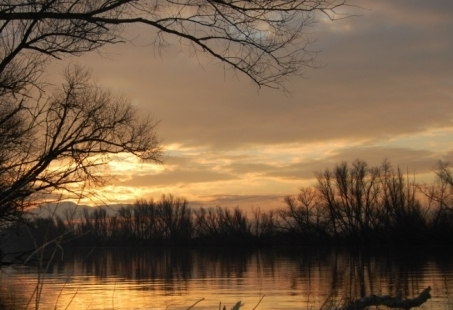 Natuur 's avonds