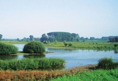 Ontdek natuurgebied De Gelderse Poort - 4-daags Fietsarrangement nabij Nijmegen
