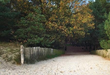3-daags Fietsarrangement in de Soesterduinen - Genieten op de Utrechtse Heuvelrug