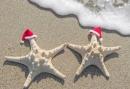 Kerstarrangement aan de Zuid-Hollandse kust - 4 dagen genieten in de Duinen