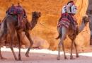 Bijzondere 8-daagse groepsreis naar Jordanie