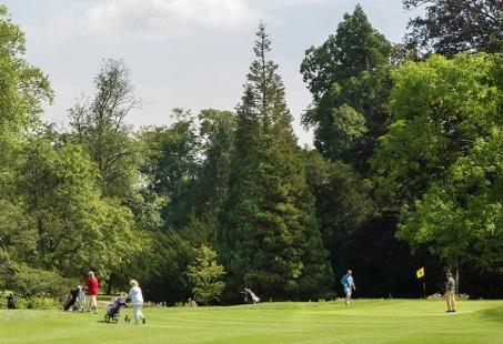 Golfbaan bij het kasteel in Brummen