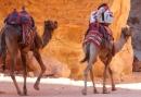 5 daagse reis met vriendinnen - Hoogtepunten van Jordanie in slechts een paar dagen!