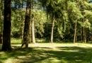5-daagse Fietsvakantie - Genieten midden in de Veluwse Bossen