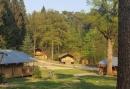 Buitenplaats op de Veluwezoom