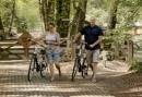 Midweek fietsarrangement in Gelderland - Uniek overnachten midden op de Veluwezoom