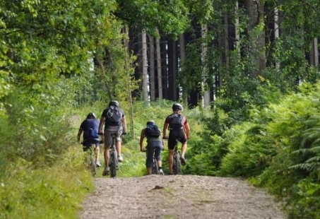 Mountainbike vriendenweekend in Limburg - Inclusief MTB routes