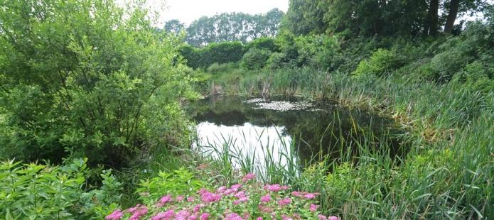 Laat u tijdens uw bijeenkomst inspireren met het 8-uurs vergaderarrangement in Drenthe