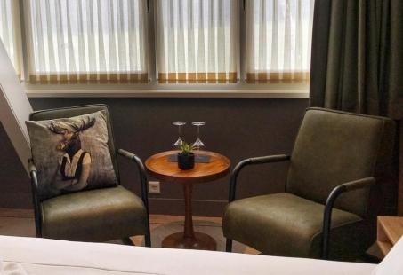 Beleef en Ontdek de Veluwe vanuit uw hotel kamer inclusief E-bike