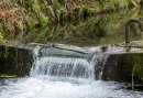 3-daags Wandelarrangement in Brilon - Ontdek de schitterende omgeving