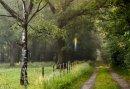 3 dagen Genieten in Twente - Ontdek een van de oudste dorpen