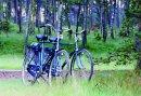 4-daags Fietsarrangement in het mooie bosrijke Sauerland