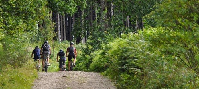Stoer uitje in het Montferland – Mountainbiken door de natuur