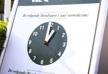Mini zomer arrangement - Rondvaart en Fluisterfietsen