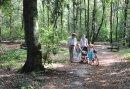 Wandelen in het bos tegenover het hotel