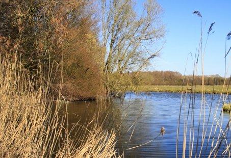 Fietsvakantie door de Biesbosch - 5 dagen genieten in een bijzonder Nationaal Park
