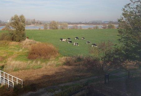 Wie betaalt de Veerman - 3 daags Fietsarrangement in Gelderland