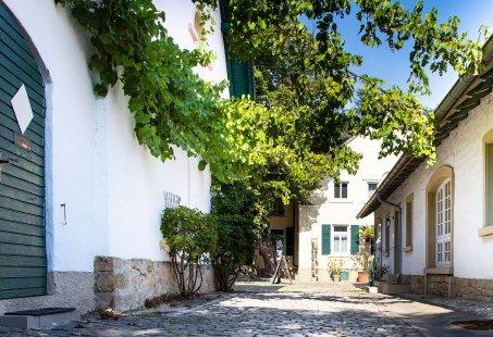 4 dagen Wandelen op de Duitse wijnroute en slapen in een Wijnkamer