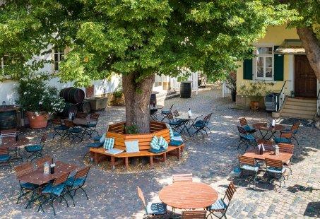 Wijn en Wandelliefhebbers genieten van deze 3-daagse Wandeltrip in Bad Durkheim