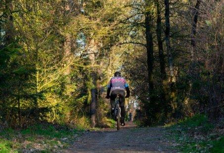 Mountainbiken door de Montferlandse bossen - Weekendje weg in Gelderland