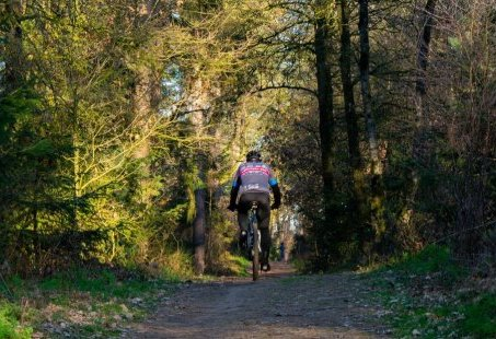 Midweek Mountainbike arrangement in het Montferland