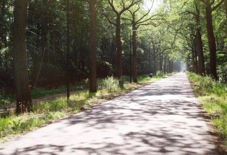 Weekendje Fietsen in de Brabantse Kempen
