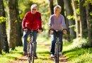 Ontdek de mooie omgeving van de Utrechtse Heuvelrug per fiets met dit 2-daags Fietsarrangement